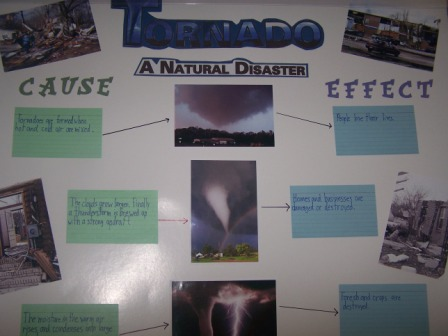 Becky Cate How Human Actions and Natural Disasters